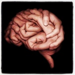 hands-form-brain